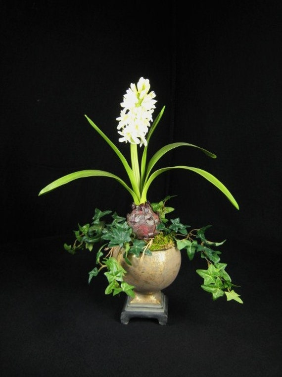 White Hyacinth and Ivy Elegant Urn Floral Arrangement Home Decor