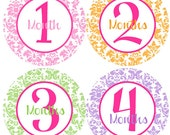 Girl Monthly Stickers - Baby Monthly Stickers - Pink, Orange, Green, Purple Damask Girl Month Stickers - Melissa