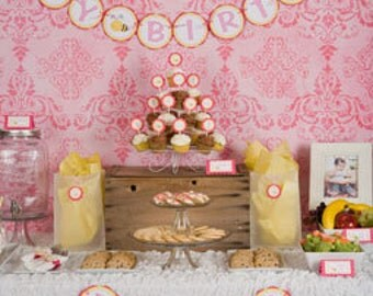 Pink Bee Birthday Party Decorations - Create Your Own Package of Coordinating Decorations!