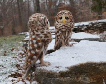 Mr. Barred Owl, needle felted bird sculpture