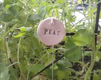 Peas Plant Marker