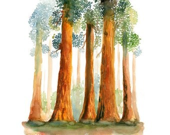 Redwoods-Landscape painting-Watercolor-Archival Print from my original watercolor  11x14 inch