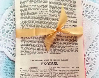 Bundle of Sweet Vintage Aged Bible Pages