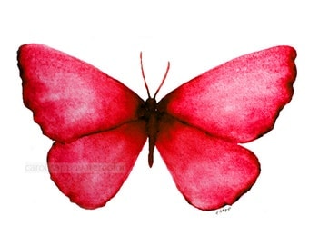 "red butterfly archival 5"" x 7"" print of watercolor painting"