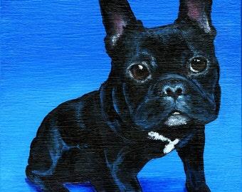 French Bulldog Pet Portrait 4 x 4 inch Print by SBMathieu
