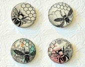 Bee Magnets, Kitchen Magnets, Magnet Set of 4, Nature Magnets 1.5 inch, Buy 3 Get 1 Free  131M