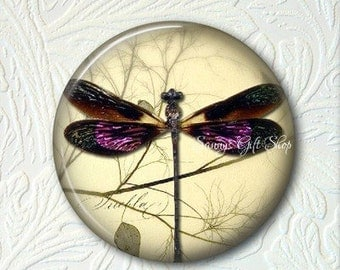 Pocket Mirror Dragonfly  Buy 3 Get 1 Free  092-S
