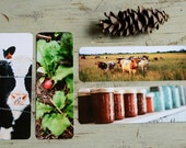 Homesteading Film Photography Bookmarks Set of 4