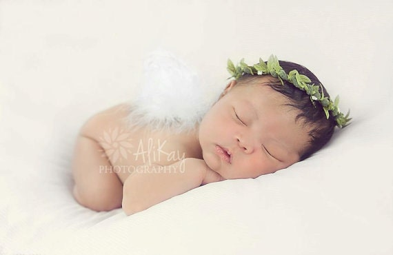 Twin Baby Angel Pictures Twin set of baby cherub angel