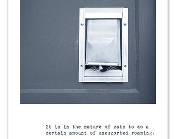 West Seattle Max - Feline Words of Wisdom - Photo Greeting Card
