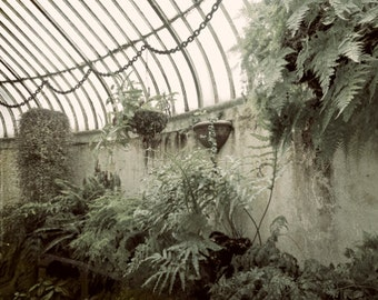Old Greenhouse In Belfast, Northern Ireland 5x7 Inch Photographic Print