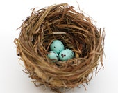Robins bird nest wedding table decor rustic wedding