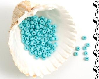 Czech Glass Seed Beads Preciosa 9/0 (20g) Sky Blue
