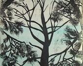 Pine Trees blue sky version