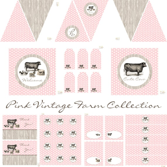 Vintage Farm Decorations for Girls Birthday Party by BeeAndDaisy