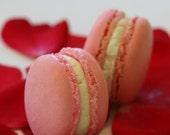 Premium Authentic French Macarons - Twenty Four Piece Box