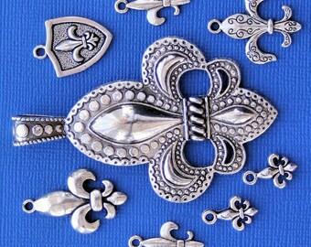 Fleur de Lis Charm Collection Antique  Silver Tone 8 Charms - COL215