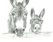 Print - Two Donkeys