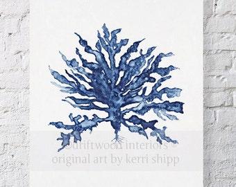 Sea Coral III in Denim Print 8x10 - Sea Life Art Print - Coral Art Print - Blue Coral Print - Seaweed Giclee Print - Marine Life Print