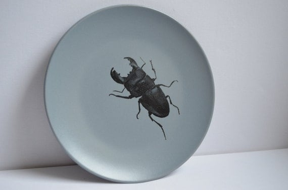 Stag beetle painted side plate