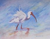 Bird Print, Beach Bird Painting, Beach Bird Wall Art, Ibis Painting, Ibis Print, Bird Watercolor, Coastal Art, Bird Art,Ocean Seashore Print