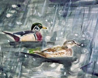 First Wood Ducks of Spring in Snow at Wissahickon Watercolor Painting