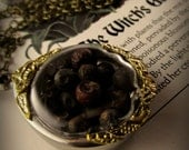 Juniper Berries shadowbox herb locket