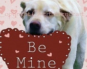 Valentine's Day Card  Labrador Dog Card Cupid Says Be Mine Red Hearts Pink Hearts