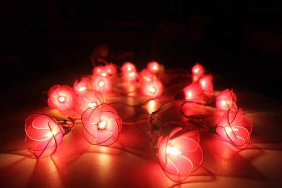 Red flower string lights for party and decoration 20 bulbs