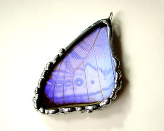 Real Butterfly Wing Pendant, Morpho Sulkowskyi