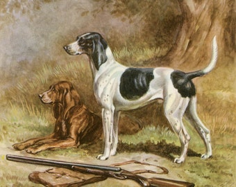 American Foxhound Vintage Print, Edwin Megargee Illustration, 1940's Wall Decor,  Hunting Dogs Picture, Gun Dog