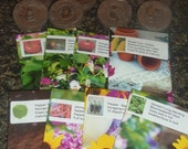 Heirloom vegetable seed collection assortment plus peat pellets Great Gardener Gift