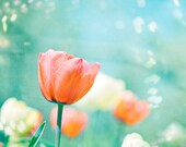 "Flower Photography - tulips peach mint print spring orange aqua blue nature floral coral cream pastel wall photograph, ""Garden of Dreams"""