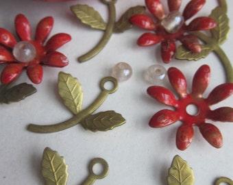 12 Flower Stem And Leaf Finding