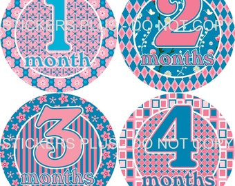 Baby Month Stickers Plus FREE Gift Girl Blue Pink Flowers Dots Stripes Big Numbers Stickers Monthly Milestone Bodysuit Age Number Stickers