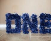 ONE NAVY BLUE - 1st birthday photo prop