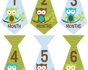 Monthly Baby Boy Stickers, Milestone Stickers, Baby Month Stickers, Monthly Bodysuit Sticker, Monthly Stickers Owls (Oscar Ties)