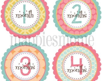 Monthly Baby Girl Stickers, Milestone Stickers, Baby Month Stickers, Monthly Bodysuit Sticker, Monthly Stickers (Charlotte)