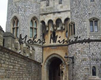 Windsor Castle Snapshot Poster