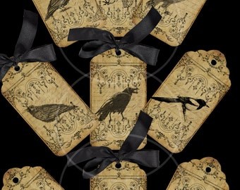 9 Vintage Birds TAGS printable digital download
