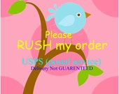 RUSH my oder Please-14 to 21 days only-Add On-USPS