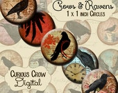 Crows & Ravens Grungy 1 inch 25mm Circles Digital Collage Sheet - INSTANT Download - Bottle cap Pendant Jewelry - Printable Download