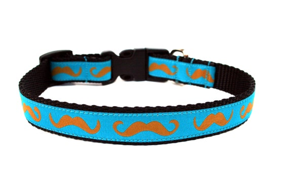 "Mustache Dog Collar 3/4"" Fun Dog Collar in Turquoise SIZE MEDIUM"
