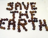 Hypoallergenic Soap Nuts Berries Laundry Soap ECO Friendly 100%