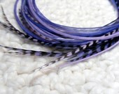 Mixed Purple Feathers Extensions Long Hair Feathers Lilac Violet Grape Purple Hair Accessories - 7