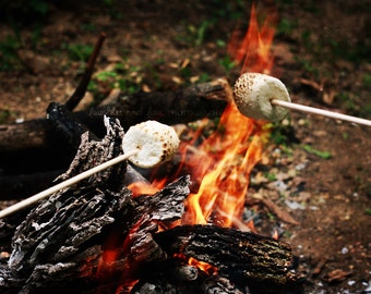 S'mores Campfire Fine Art Photography Spring Summer Smores Fire Camping Marshmallow Hiking Outdoors Nature Food Kitchen Home Decor Wall Art