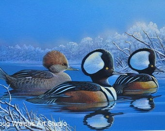 Original Duck Painting, Hooded Mergansers, Birds, Acrylic, Wildlife Art, Ducks, Wall Art by Doug Walpus