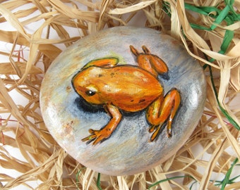 Orange Frog Painted On Rock
