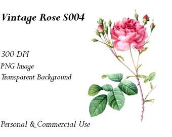 Vintage Rose Clip Art Transparent Png File  S004