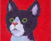 Cat, Cornish Rex, Teenager, Kid's Room, Nursery  Decor -  FREE SHIPPING - Original Acrylic  Painting by  ebsq Artist Ricky Martin